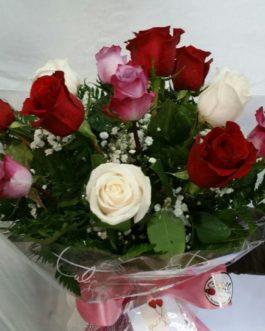 12 Rosas de colores